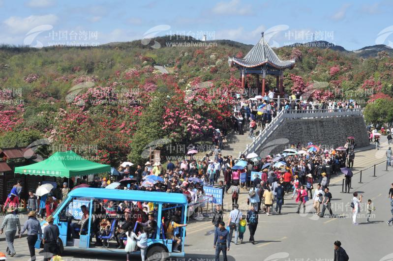 贵州百里杜鹃花节举办彝族祭花神仪式