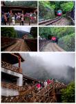 体验阿里山的小火车