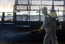 H5N6禽流感疫情升温