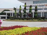 厦门金砖峰会会场亮丽迎客,台商承建金砖峰会主场馆改造升级建设