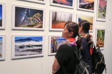 2017浙台合作周书画摄影艺术展在浙江美术馆亮相