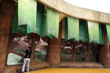 台北市动物园为河马打造的新家落成启用