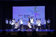 """""""情系青春——两岸青年中原行""""活动"""