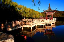 秋日看京城