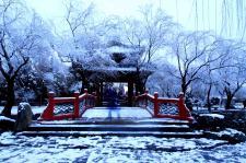 在京城看雪
