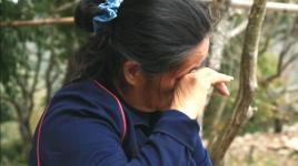 台湾水蜜桃阿嬷65岁独自抚养7孙儿 落泪忧心未来