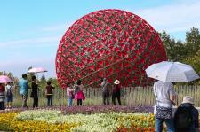 2018台中世界花卉博览会