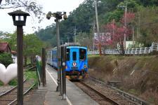 新竹县植树活动在新竹县新丰生态苗圃登场